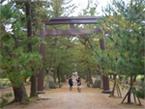 三の鳥居「松の参道の鳥居」