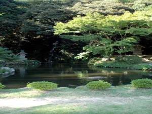 北島さんの庭園